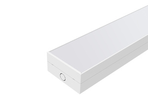 Linear Light: W120mm Frosted Batten