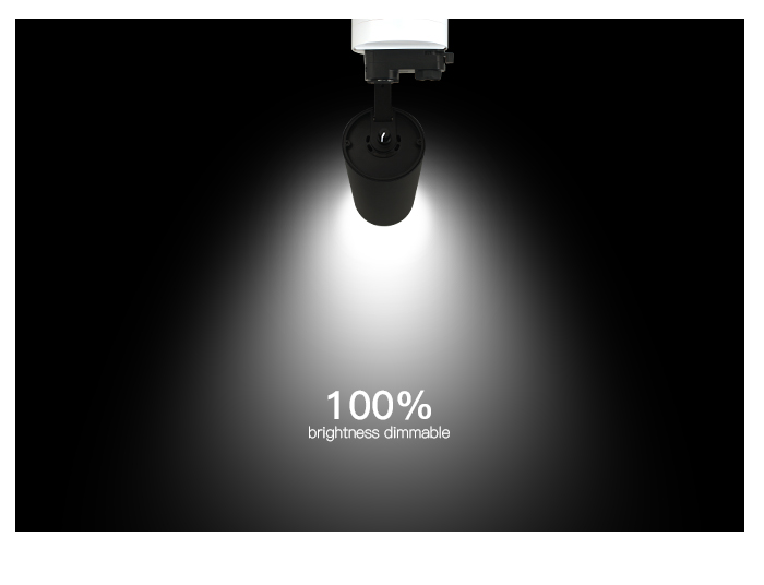 TLG track light dimmer on lamp 100% brightness.jpg