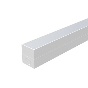 Linear Light: W55mm Frosted Batten