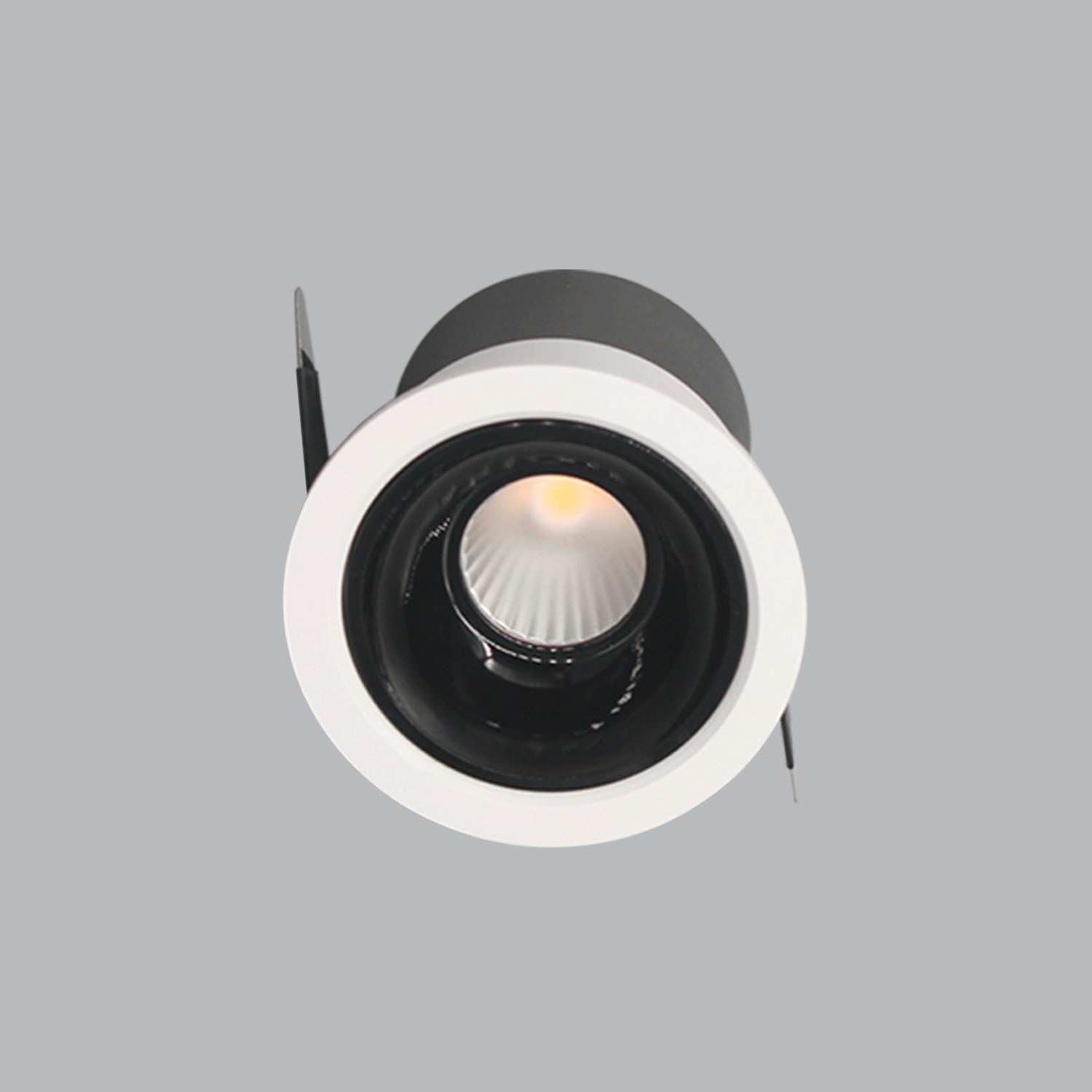 DLP Downlight