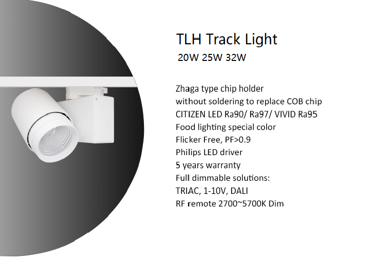 TLH track light.png